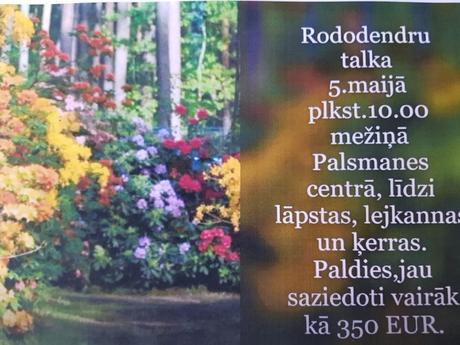 Rododendru talka
